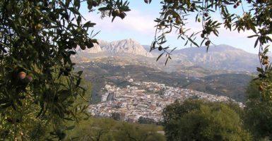 Agroolivarera-Riogordo-Pueblo (1)